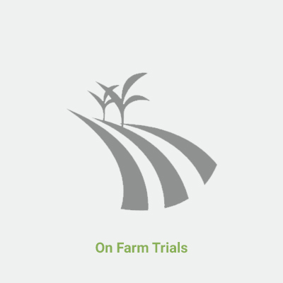 On Farm Trials