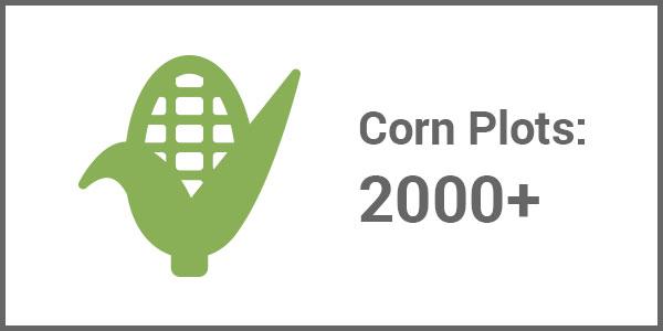 Corn Plots 2000+